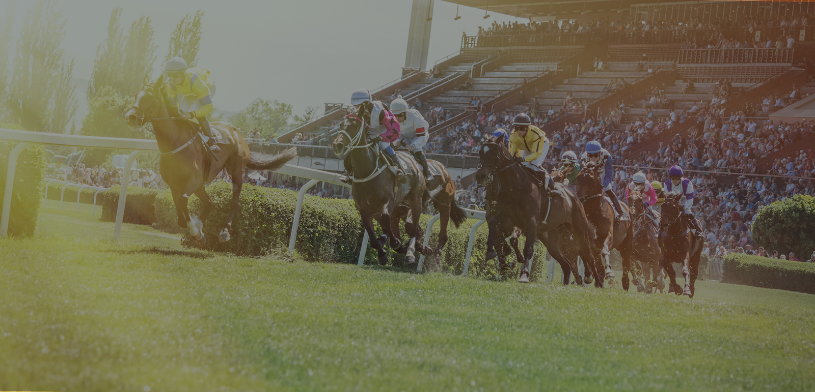 Racing TV selects Singula® Subscriber Intelligence to power AI-driven,real-time customer engagement